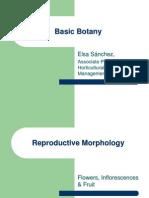 Basic Botany Part III - Reproductive Morphology