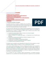 Resumen del marco conceptual NICS