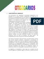 Protozoarios Zoo