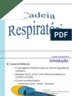 cadeia_respiratoria