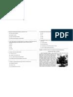 avaliação 4ª série LP. 2