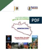 OK Guerrero Cultura Ambiental
