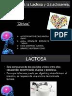 ALE cia a La Lactosa y Galactosemia