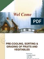 Gopika,Pre-cooling,Sorting & Grading