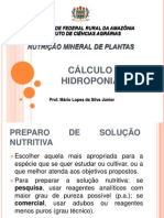 Calculo Hidroponia1