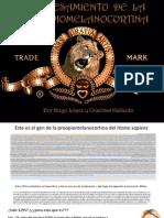 Procesamiento de la proopiomelanocortina