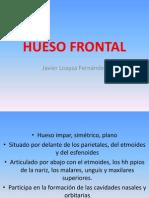 Frontal Parietal