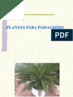 plantas paisagismo