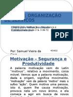 AULA 2 e 3 DE 5 - MOTIVAÇÃO SEGURANÇA E PRODUTIVIDADE