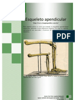 Esqueleto-apendicular com imagens para fixaçao
