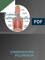22018240-Resumen-Sindromes-Pleuropulmonares