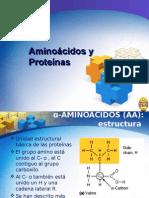 amino%C3%A1cidos_y_prote%C3%ADnasii[2]