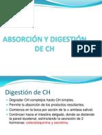 ABSORCIÓN Y DIGESTIÓN DE CH