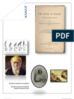 Ensayo Origen Especies Darwin