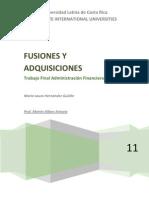 Trabajo Final Adm. Fin II. Fusiones y Adquisiciones en la práctica
