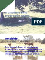 5.- El Ambiente p Animal