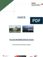 Info Sauce