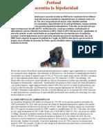 informe alimentacion 2011