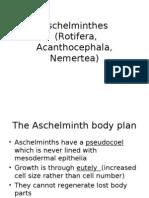 Aschelminthes