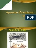 Golgi+lisossomos[1]