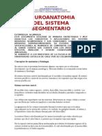 Neuroanatomia Del Sistema Segment a Rio, Doc