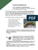 Cultivo de Plantas Aromatic As