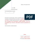 Modelo Carta Tema Elegido y Sinopsis
