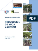 EDA_Manual_Produccion_Yuca_06_09