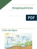 ciclos biogeoqumicos
