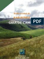 guiaTDF