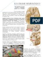 exame neurologico