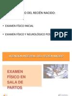 Examen Fisico Del Rn