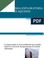 expocirugialaparatomia-100424103523-phpapp01
