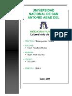 Bioseguridad médica