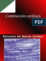 7-contraccincardiaca-090730143645-phpapp02