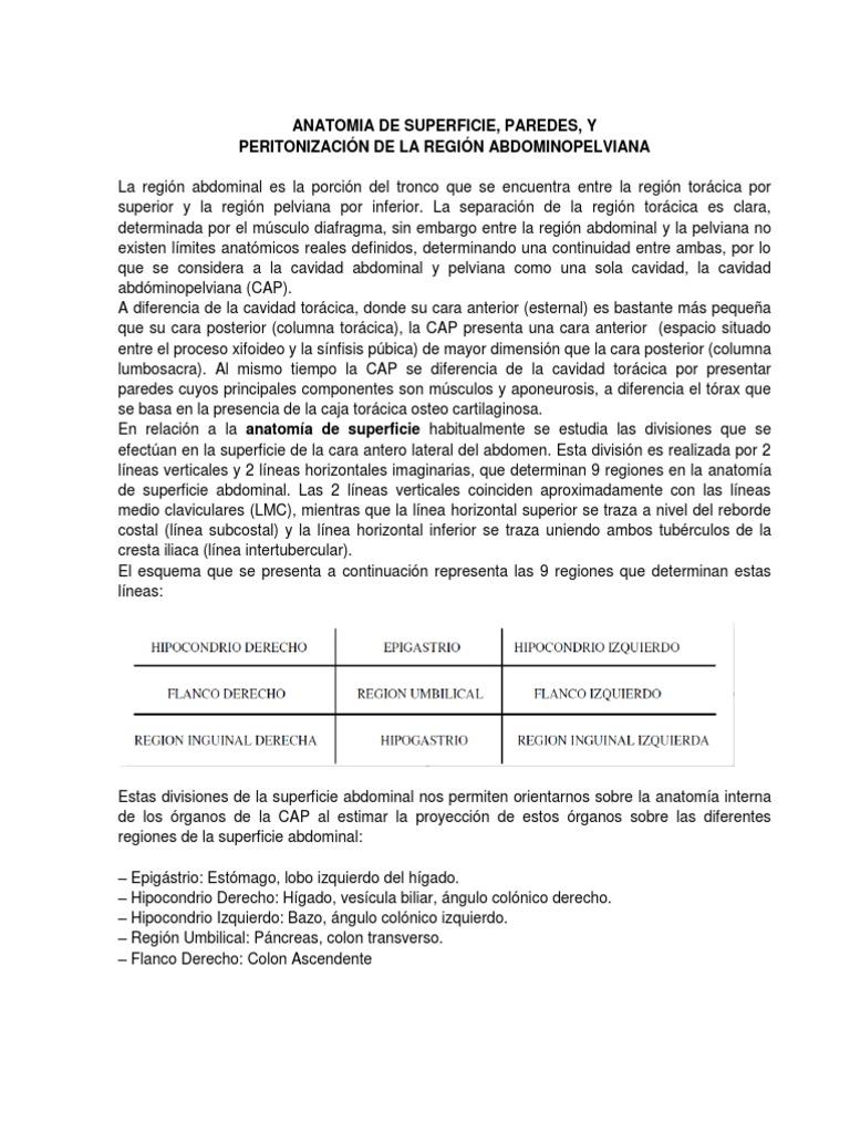 ANATOMIA DE peritoneo