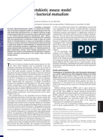 B. Theta and M. Smithii Gnotobiotic Mice Have Increased Adiposity PNAS 2006