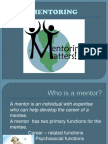 Roles of a Mentor