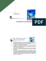 tema 5 integracion economica