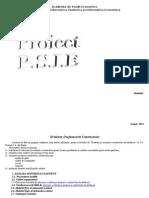 Proiectarea Sistemelor Informatice