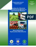 Roadmap2-08 Next Generation Hydrocarbon Bio Refineries