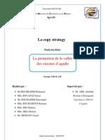 La Copy Strategy (2) PDF