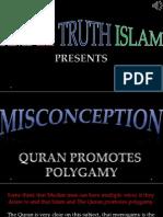 24. Quran Promotes Polygamy