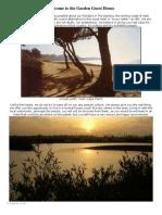 Real Africa Brochure