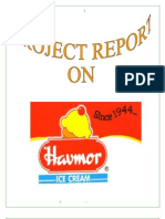 Havmor Ice Creams Bba Mba Project Report