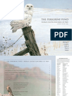 The Peregrine Fund Annual 2006