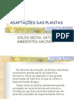 ADAPTAÇÕES DAS PLANTAS