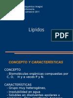 04 LIPIDOS
