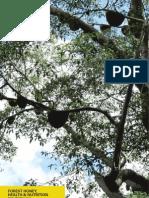 Nutrition and health benefit of Apis dorsata and Trigona spp - Madhu Duniya 2011