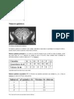 Números quânticos - Brasil Escola